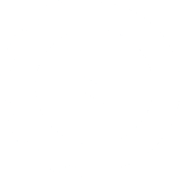 Data Mechanics logo